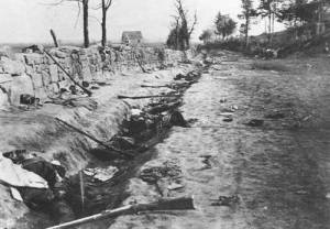 Confederate dead at Marye's Heights
